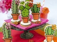 Cactussen hoofdfoto klein