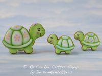 Schildpadden 4